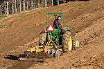 Ben Zeitman and Katie Quinn, owners/winemakers at Amador Foothill Winery in Amador County...Ben on the tractor preparing the vineyards for new wine grape vine planting...John Deere 970 tractor.