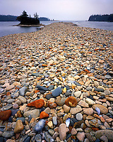 Rocky beach on Schoodic Peninsula; Acadia  National Park, ME