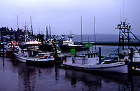 Commercial crab boats sell live crab at dockside in Newport, OR