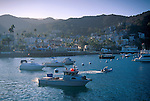 Commercial fishing boat and yachts anchored in Avalon Harbor at sunset, Catalina Island, California