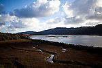 Tomales Bay in Marin County, Calif., December 12, 2012.