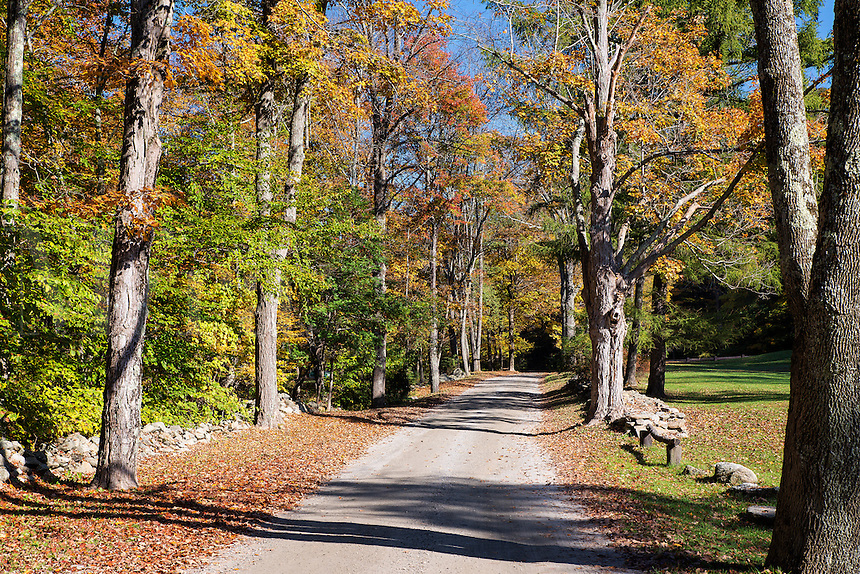 Unpaved autumn road, Maceddonia Brook State Park, Kent, Connecticut, USA