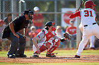 Umpire Zach Tieche and Illinois State Redbirds catcher Nick Zouras (14) await the pitch with Daulton Mosbarger (31) at bat during a game against the Ohio State Buckeyes on March 5, 2016 at North Charlotte Regional Park in Port Charlotte, Florida.  Illinois State defeated Ohio State 5-4.  (Mike Janes/Four Seam Images)