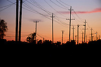 Telephone and electric poles,Vancouver, Canada