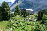 France, Hautes-Alpes (05), Villar-d'Arène, jardin alpin du Lautaret, le jardin, la galerie de l'Alpe à l'entrée du jardin et les pentes du Combeynot en fond
