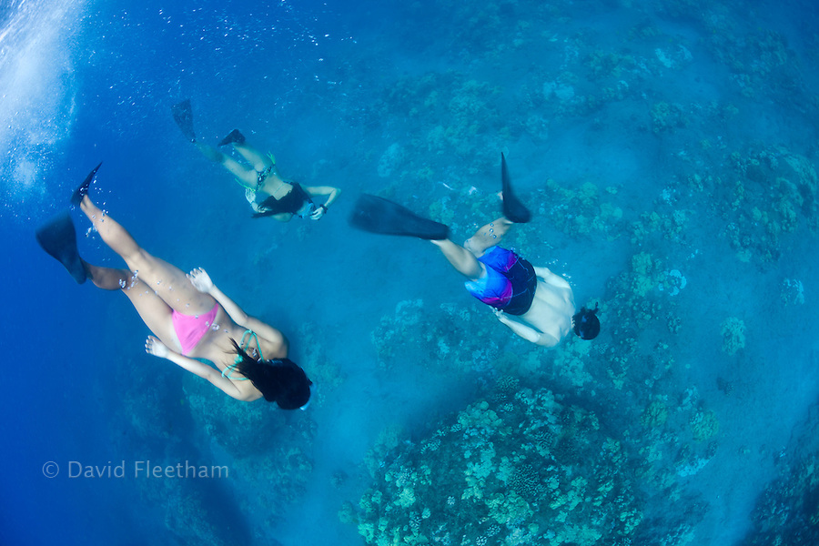 Three young people (MR) free diving off the island of Lanai, Hawaii.