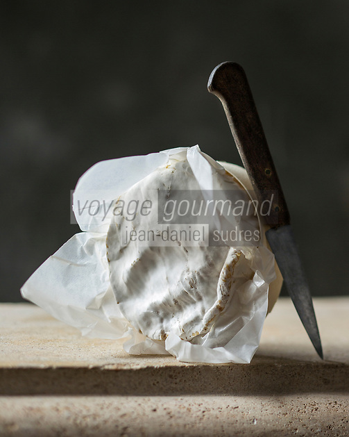 France, Calvados (14), Pays d' Auge,   AOP Camembert de Normandie au lait cru // France, Calvados, Pays d' Auge,  PDO Normandy Camembert Cheese