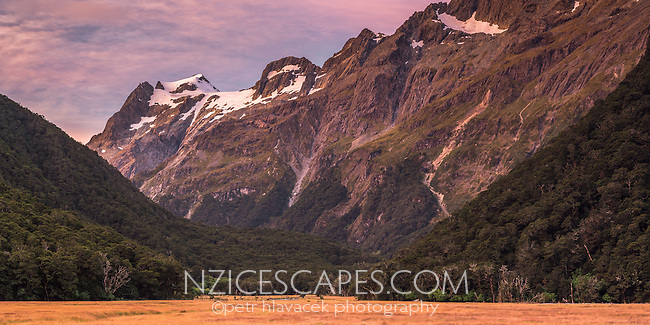 Pink colours of twilight over Humboldt Mountains as seen from Routeburn Flats on Routeburn Track, Mt. Aspiring National Park, UNESCO World Heritage Area, Central Otago, New Zealand, NZ