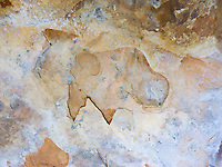 """BUFFALO HIEROGLYPH-3""<br />