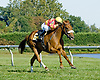Welcome Dance winning The Christiana Stakes at Delaware Park on 9/15/12