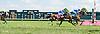Runaway King winning at Delaware Park on 8/5/15