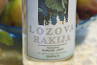Bottle of Crmnicka Lozova Rakija grappa type of spirit Durovic Jovo Winery, Dupilo village, wine region south of Podgorica. Vukovici Durovic Jovo Winery near Dupilo. Montenegro, Balkan, Europe.