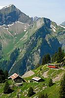 CHE, SCHWEIZ, Kanton Bern, Berner Oberland, Schynige Platte oberhalb Interlaken: Die Schynige Platte-Bahn war die erste Bahn im Berner Oberland, die einen Alpengipfel bezwang. Hier vor Suleggund Bellenhoechst | CHE, Switzerland, Bern Canton, Bernese Oberland, Schynige Platte: Schynige Platte Cable Railway, Sulegg and Bellenhoechst mountains