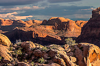 Arches National Park is located on the Colorado River 4 miles north of Moab, Utah. It is known for containing over 2,000 natural sandstone arches, including the world-famous Delicate Arch, in addition to hundreds of soaring pinnacles, massive fins and giant balanced rocks.