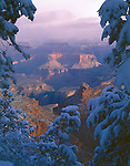 Grand Canyon National Park, AZ <br /> Snow laden trees frame a view of the Grand Canyon near the Bright Angel trail head on the south rim
