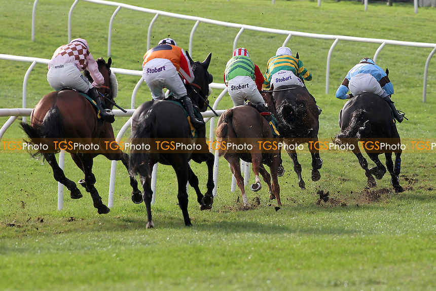 The field races towards the finish in the Kettle Chips Handicap Hurdle - Horse Racing at Fakenham Racecourse, Norfolk - 26/10/12 - MANDATORY CREDIT: Gavin Ellis/TGSPHOTO - Self billing applies where appropriate - 0845 094 6026 - contact@tgsphoto.co.uk - NO UNPAID USE
