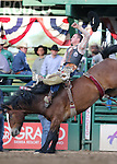 Jake Brown competes in the bareback bronc riding event at the Reno Rodeo in Reno, Nev. on Friday, June 19, 2015.<br /> Photo by Cathleen Allison/Nevada Photo Source