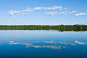 Pará State, Brazil. Xingu River; the river bank lined with forest and the blue sky reflected in the water.