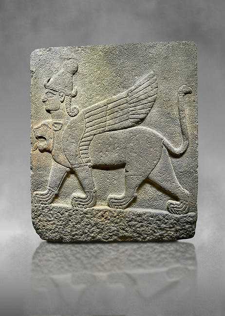 Hittite relief sculpted orthostat stone panel of Herald's Wall Basalt, Karkamıs, (Kargamıs), Carchemish (Karkemish), 900-700 B.C. Chimera. Anatolian Civilisations Museum, Ankara, Turkey.<br /> <br /> Three-headed sphinxes. Winged lion, with a bird of prey's head on the end of its tail, also has a human head with hair in plaits and a conical headdress. The details in his feet are very distinct.  <br /> <br /> Against a grey art background.