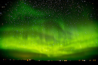 Northern lights (Aurora borealis)<br /> Indian Head<br /> Saskatchewan<br /> Canada