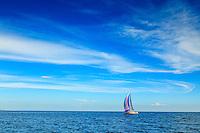 Segelbåt seglar ensam på havet med himmel och horisont utanför Nynäshamn i Stockholms skärgård.