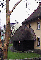 One of several thatched houses along the main road through Adare, Ireland.