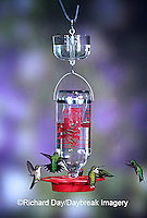 01162-087.15 Ruby-throated Hummingbirds (Archilochus colubris) at Best One Hummer Feeder with clear nectar protector Shelby Co.  IL