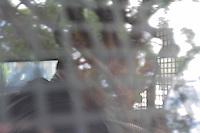 SAO CAETANO DO SUL.-SP) 22 DE JANEIRO 2013 CIDADES -COTIDIANO.FURTO DE FIO DE COBRE. A GCM de Sao Caetano do Sul prendeu em flagrante, um homem roubando fio de telefone proximo ao Forum de Sao caetano do Sul. Ele subiu em uma arvore e com uma faca cortou os cabos, devido o furto o Forum ficou sem telefone.O caso foi para o 3DP . SP ADRIANO LIMA / BRAZIL PHOTO PRESS).