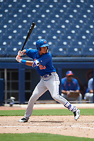 GCL Mets designated hitter Mark Vientos (15) at bat during the second game of a doubleheader against the GCL Nationals on July 22, 2017 at The Ballpark of the Palm Beaches in Palm Beach, Florida.  GCL Mets defeated the GCL Nationals 1-0.  (Mike Janes/Four Seam Images)
