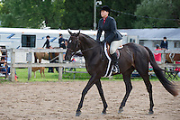 English Equitation