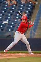 Palm Beach Cardinals Casey Turgeon (25) at bat during a game against the Tampa Yankees on July 25, 2017 at George M. Steinbrenner Field in Tampa, Florida.  Tampa defeated Palm beach 7-6.  (Mike Janes/Four Seam Images)