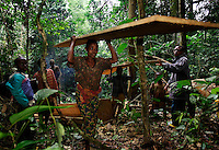 Woman Head Loading Mahogany..Motubile Kasipa and his artesinal logging company.  He has two chain saws, but only one is working.  They mill the tree into planks on site with only the chain saw... and are incredibly accurate.  Then men and women head load the planks out to the road. This 2X12X15 foot solid mahogany board will bring one USDollar to the logging company...