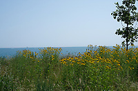 31st Beach Prairie