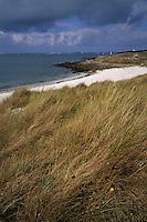 Europe/France/Bretagne/29/Finistère/L'Aber Vrach: Landeda - Dunes Sainte-Marguerite