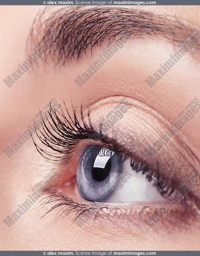 Closeup of a young woman beautiful blue eye with long eyelashes