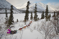 Dee Dee Jonrowe on the trail nearing the Rainy Pass checkpoint in the Alaska Range during Iditarod 2009