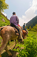 Western tourist and local guide on horseback, Gangabal Lake region of Kashmiri Himalayas, India.