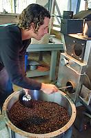 Business owner Kaleo emptying roasted coffee beans from roaster, Kaleo's Koffee, Hamakua area, Big Island.