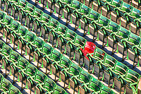 "The ""Red Seat"" in right field in Fenway Park commemorates the landing place for the longest home run in Fenway history, struck by the bat of the ""Splendid Splinter"" Ted Williams on June 9, 1946.  The home run measured 502 feet."