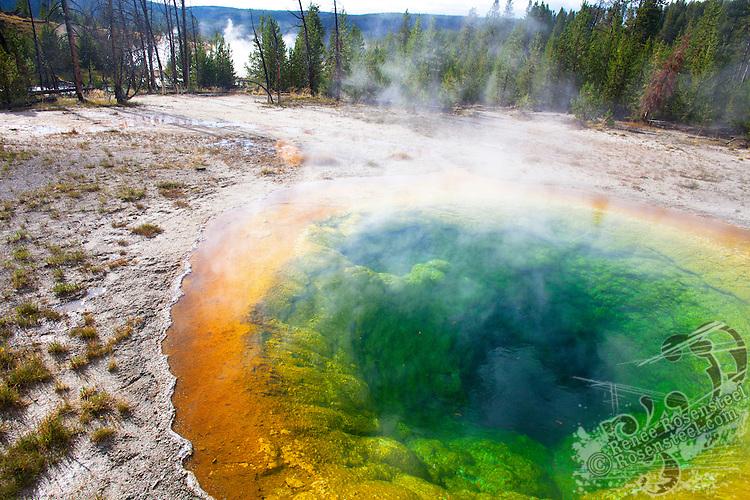 Yellowstone August
