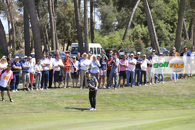 Tommy Fleetwood (ENG) chipping onto the 8th green during Round 2 of the Open de Espana  in Club de Golf el Prat, Barcelona on Friday 15th May 2015.<br /> Picture:  Thos Caffrey / www.golffile.ie