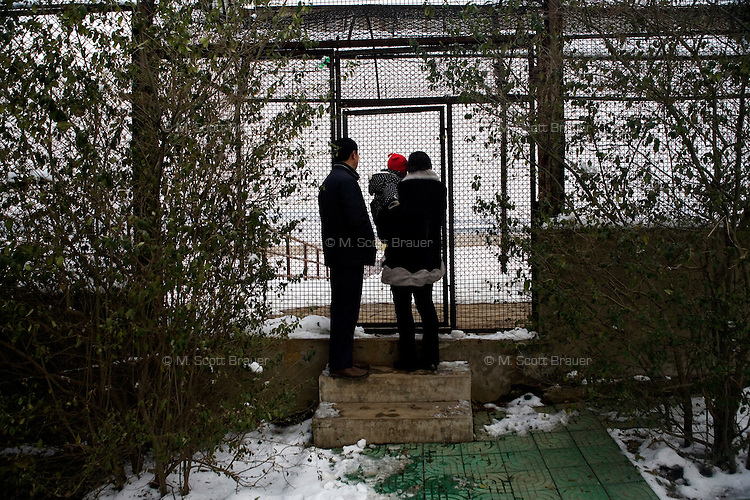 A family looks into an animal's cage in the Hefei Zoo in Hefei, China.