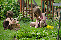 Two girls working in community garden for camp, Yarmouth Maine, USA