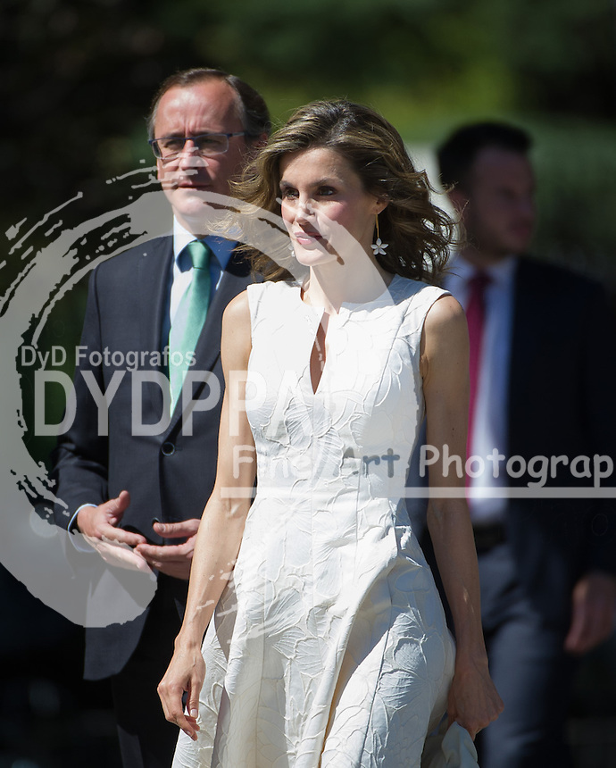 Queen Letizia of Spain arrives; Equality Minister, Alfonso Alonso