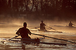 Rowing, single racing shells, rowers, sunrise, Seattle, Lake Washington, winter, Washington State, Pacific Northwest, USA,
