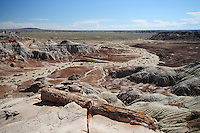 Navajo County, Arizona – This area of the Painted Desert in the Petrified Forest National Park is called Blue Mesa. A petrified log is seen in the foreground of one of the most visually impressive badlands formations of the park. The Painted Desert is a broad region of rocky badlands featuring unique rocks in a variety of hues - lavenders, grays, reds, oranges and pinks. Located in Northeastern Arizona, the Painted Desert attracts hundreds of thousands a visitors each year. Photo by Eduardo Barraza © 2014