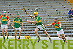 Tom Murnane Kerry and Andrew Gaule Carlow in action during their Allianz Hurling league clash in Fitzgerald Stadium on Sunday