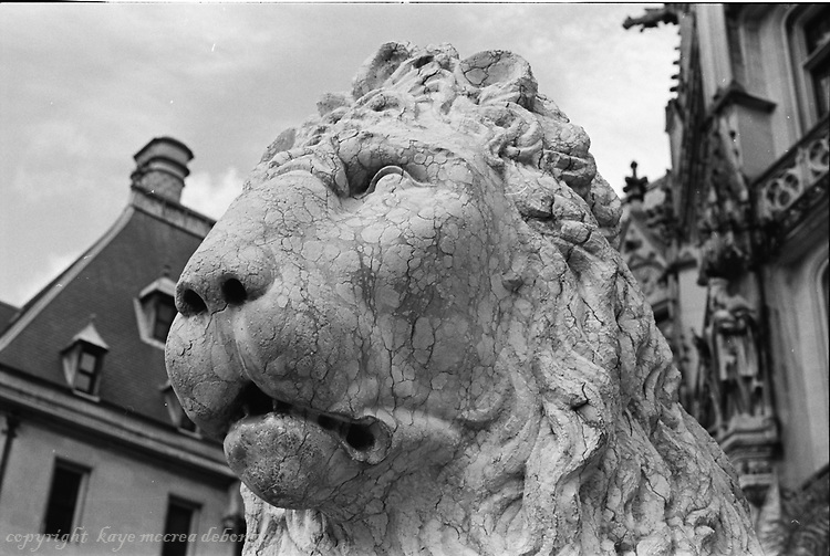 Biltmore Estate B/W Images