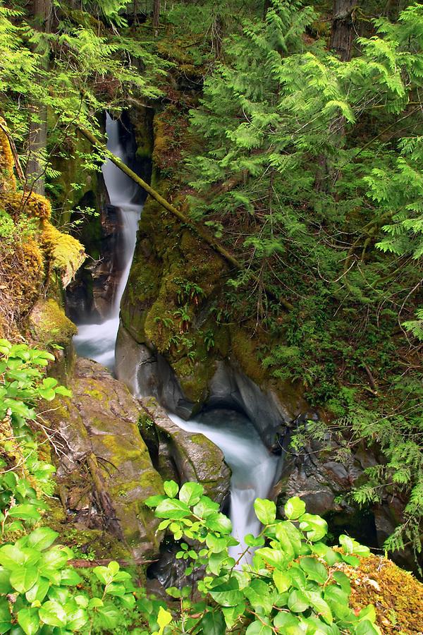 Ladder Creek Falls, Newhalem, Seattle City Light Company, Ross Lake National Recreation Area, Whatcom County, Washington, USA