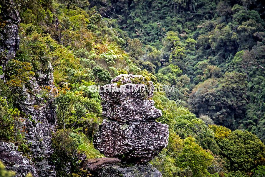 Parque Nacional da Serra Geral. Aparados da Serra. Cambara do Sul. Rio Grande do Sul. Foto de Andre Arcenio.